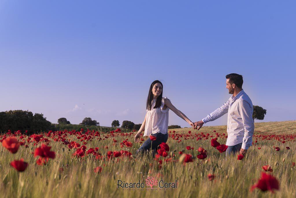 Preboda campo amapolas por Ricardo Coral